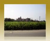 畯禹不動產經紀有限公司提供,桃園縣觀音鄉配建●農地●觀音保生可配建農地售農地998.14萬